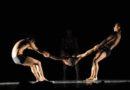 Compañía Nacional de Danza se presentará en el Teatro Baralt