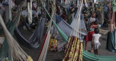 Desplazamientos baten récord mundial en el día del refugiado