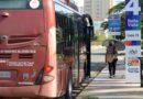 Transportistas en el Zulia corren el riesgo de morir de hambre